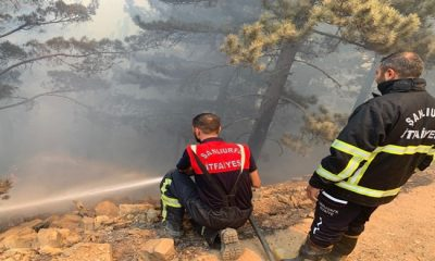 Türkiye'de orman yangınlarıyla mücadele sürüyor
